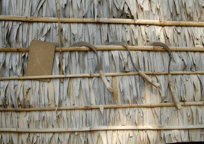 Faucilles accrochées, rangées sur la façade d'une maison, village de Sra Srang, province de Siem Reap.