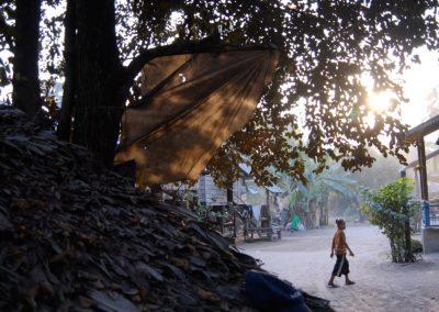 MMestM : Cambodge 2008